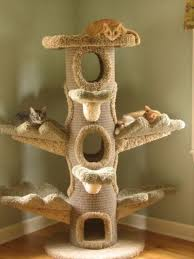 Free Diy Cat Furniture Plans by Cat Furniture For Large Cats Cats Love Cat Trees But You Need
