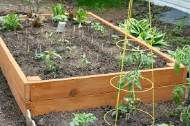 when to start vegetable garden best idea garden