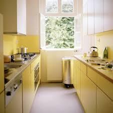 Corridor Galley Kitchen Nickel Chrome Swing Panel Faucet Small Modern Kitchen Design Dark