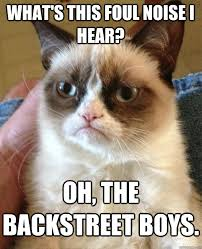 Backstreet Boys Meme - what s this foul noise i hear cat meme cat planet cat planet