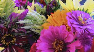 farm fresh flowers add fresh cut flowers to your farmers market shopping list the
