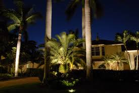 Outdoor Up Lighting For Trees Particular Tree Lighting For The Particular Palms Outdoor