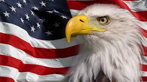 Eagles Flag Bald Eagle American Flag Best Image Konpax 2017