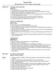 free resume template layout for a cardboard chairs google scholar storekeeper resume sles velvet jobs