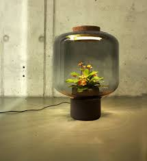 Amazing Light by Self Contained Ecosystems Amazing Light Fixtures With Live Plants