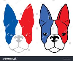 Boston Terrier Flag Bulldog French Flag Colors Vector Illustration Stock Vector
