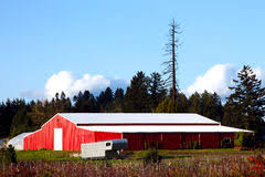 Large Barn Large Red Barn White Roof Stock Photos Royalty Free Pictures