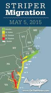 707 Area Code Map Striper Migration Map May 5 2015 On The Water