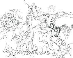 preschool jungle coloring pages jungle coloring pages printable brandland me