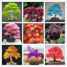 garden landscaping decking directory of bonsai garden