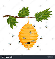 yellow bee hive on white background stock vector 487544404