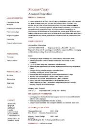 Executive Resume Template by Account Executive Resume 18 With Additional Resume Template