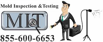 mold inspection testing mi t