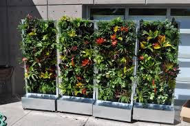 movable plants on walls vertical gardens mobile moveable