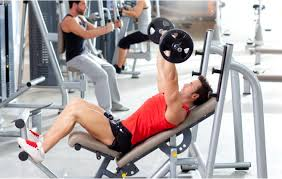 Bench Press Hypertrophy Natural Muscle Building A Look At Potential Genetics U0026 Arm Size