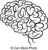 vector of vintage sketch of human brain for creative design