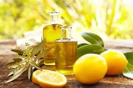 huile essentielle cuisine les huiles essentielles en cuisine nana turopathe