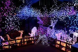 unique christmas decorations outdoor rainforest islands ferry