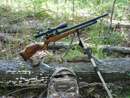 afield on airguns the challenge and joy of hunting with an