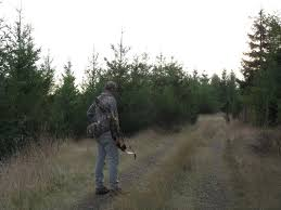 Flagging Companies In Oregon Blacktail Bows Blog Black Tales Blacktail Bow Company Llc