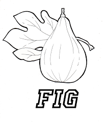 awesome printable figs fruit coloring pages for kids coloring7 com