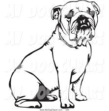bulldog clipart bulldog puppy pencil and in color bulldog