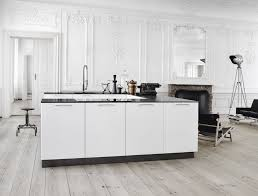 Scandinavian Kitchen Design Kitchen Style Contemporary Also Ideas Decobizz Stylish Great