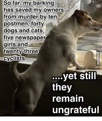 Dog Barking Meme - 25 best memes about no barking from the dog no barking from