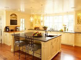 Light Yellow Kitchen Cabinets Wayne Pa Traditional Kitchen Philadelphia By Bluebell