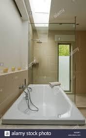 ground floor bathroom with skylight and philippe starck sanitary