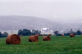 va farm bureau farmers farm bill progress intently morning ag