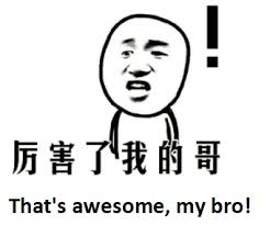 Chinese Meme - chinese meme internet slangs how many do you know like 厉害了我