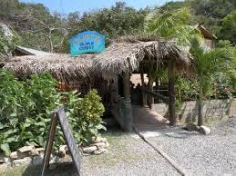 island cuisine celeste island cuisine picture of celeste s island cuisine