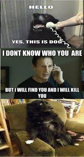 Dog Phone Meme - and then he never answered the phone again dog hilarious and humor