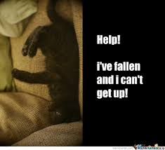 Help I Ve Fallen Meme - help i ve fallen and i can t get up by recyclebin meme center