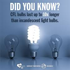 an even brighter idea u2013 disposing of cfl bulbs the right way