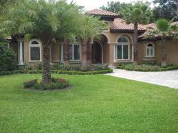 south florida landscaping ideas u2014 jbeedesigns outdoor palm trees