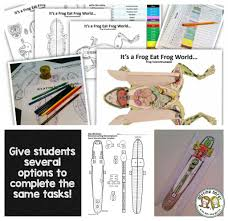 Virtual Frog Dissection Worksheet How To Differentiate In The Science Classroom Or Any Classroom