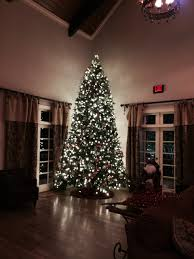 an hoa needed help with decorating a 14ft tree atlanta rental