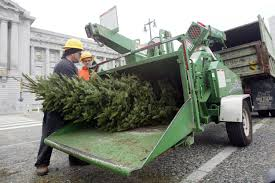 sf to launch christmas tree chipping season tuesday other news
