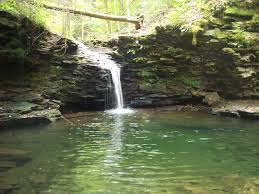 Pennsylvania wild swimming images Hidden stairway in mcconnell 39 s mill state park up near slippery jpg