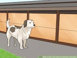How to Stop Your Dog from Barking at Strangers 11 Steps