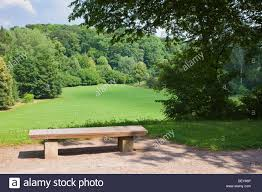 Wooden Park Bench Wooden Park Bench Overlooking A Field And Forest In An Inner City