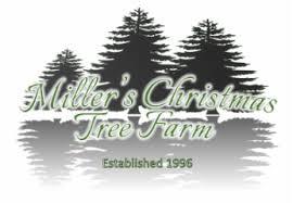 miller u0027s christmas tree farm miller u0027s christmas tree farm about