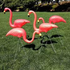 45 best plastic flamingo decoys images on flamingos