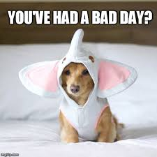 Bad Day Meme - you ve had a bad day huh imgflip