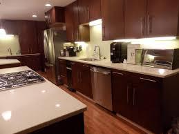 Slab Kitchen Cabinet Doors Maple Slab Door Kitchen Cabinets Kitchen
