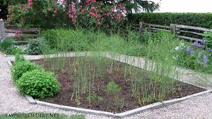 20 ideas for your home veggie garden empress of dirt