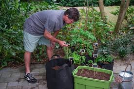 Miracle Grow Patio by Create Your Own Patio Farm With Jim Cunneen Youtube