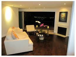 home interior tiger picture interior modern family room design small homes home interior